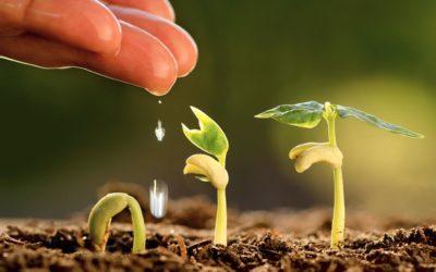 La gestion des produits face à la granularité croissance de l'information